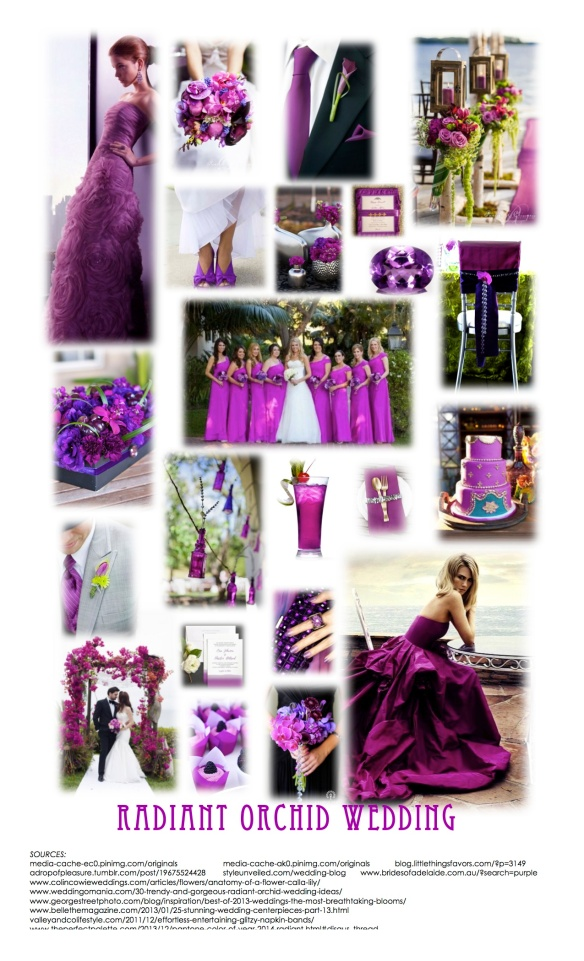IP3_RADIANT ORCHID WEDDING